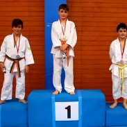 Julián Portillo Medalla de Plata